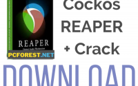 Cockos REAPER Crack