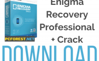Enigma Recovery Professional Crack